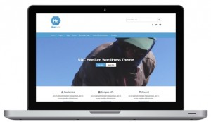 Heelium Theme for WordPress