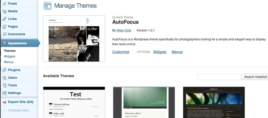 Themes-autofocus